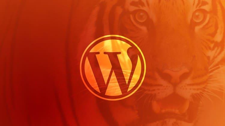 Unlocking-Power-With-Code-Become-a-WordPress-Developer